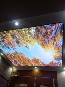 baskılı-gergi-tavan-modelleri-1-138-1-225x300 Kartaltepe Gergi Tavan genel  kartaltepe gergi tavan sistemleri kartaltepe gergi tavan modelleri kartaltepe gergi tavan fiyatları kartaltepe gergi tavan firmaları kartaltepe gergi tavan kartaltepe 3d gergi tavan gergi tavan sistemleri 3d gergi tavan