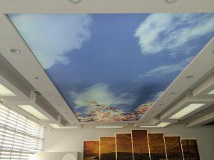 102-300x225 İçerenköy Gergi Tavan genel  içerenköy gergi tavan fiyatları içerenköy gergi tavan sistemleri içerenköy gergi tavan modelleri içerenköy gergi tavan firmaları içerenköy gergi tavan içerenköy 3d gergi tavan gergi tavan sistemleri 3d gergi tavan